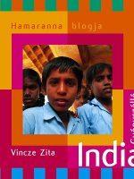 Vincze Zita India gyógyszálló
